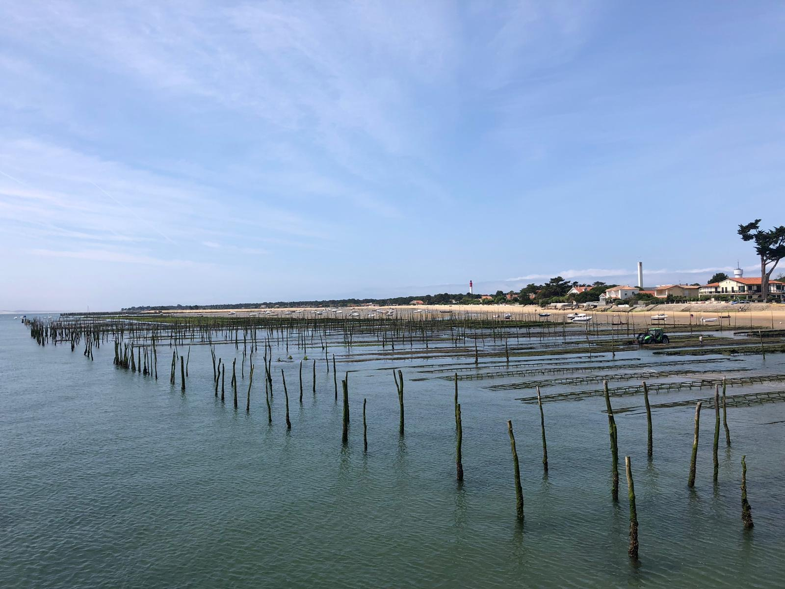 paysage mer